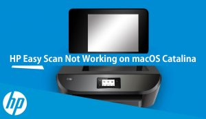 hp easy scan not working on macOS